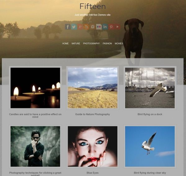 Fifteen-wordpress-theme