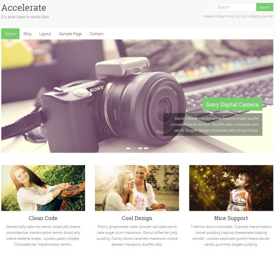 accelarate-wordpress-theme